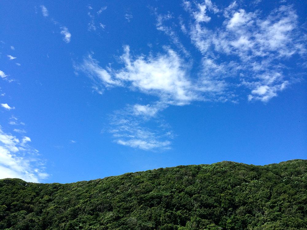 photo140803